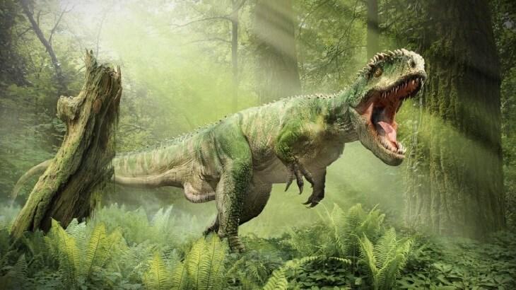 اضخم 10 كائنات عاشت على الارض