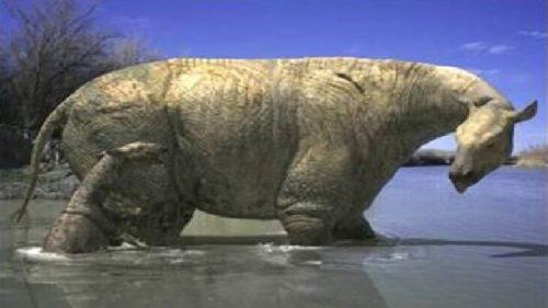 اضخم 10 كائنات عاشت على الارض 8