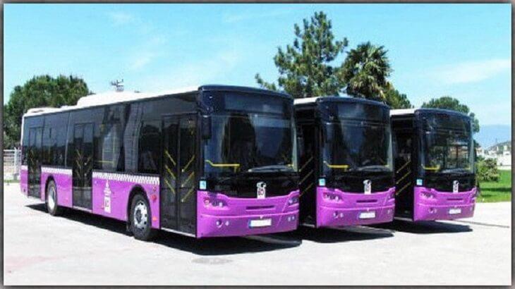 تفسير رؤية الحافلة أو الباص في المنام