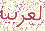 كلمة عن اللغة العربية واهميتها