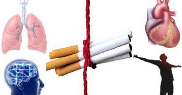 معلومات عن التدخين واضراره