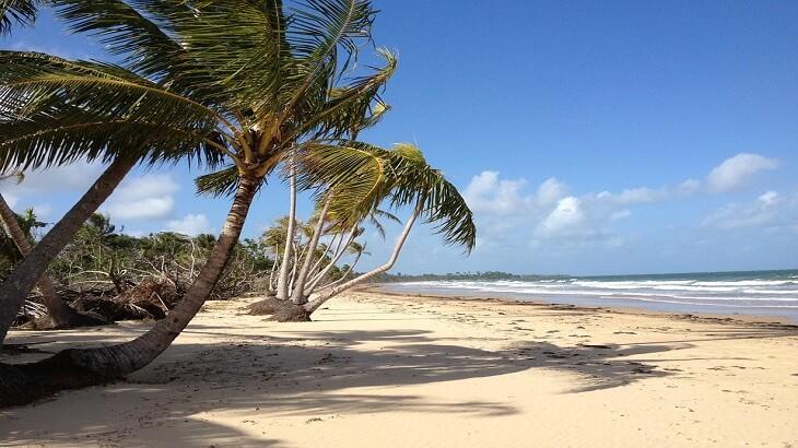 أفضل 9 شواطئ سياحية في البرازيل