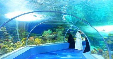 أماكن سياحية وترفيهية حلوة في جدة للعائلات