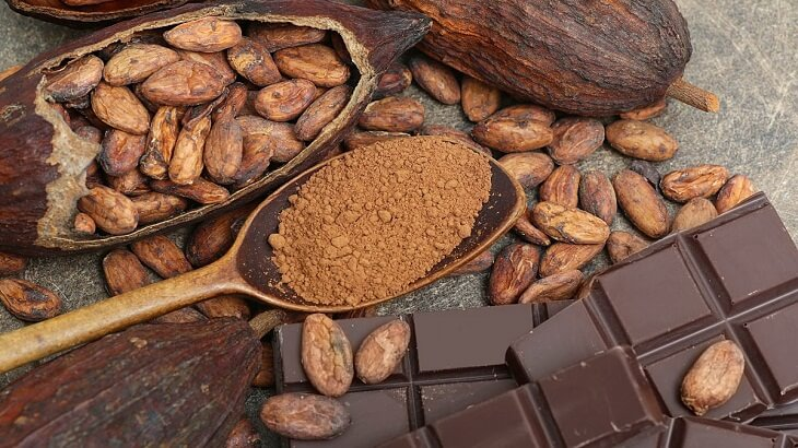 Benefits and damages of cocoa to pregnant and fetus