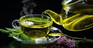 ما هي فوائد الشاي الاخضر للتخسيس واضراره