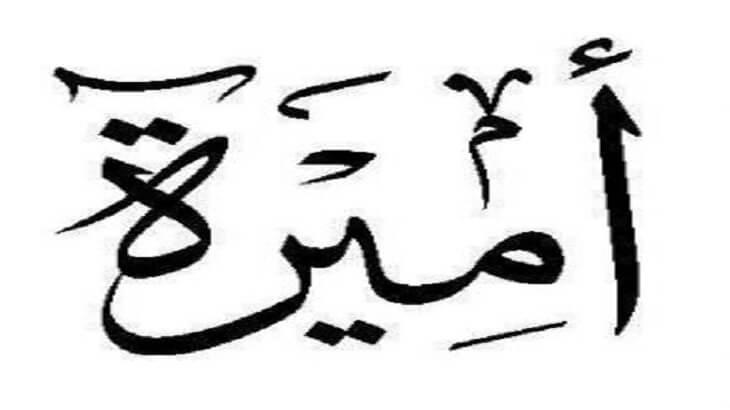 معنى اسم أميرة Amira وصفات حاملة الاسم معلومة ثقافية