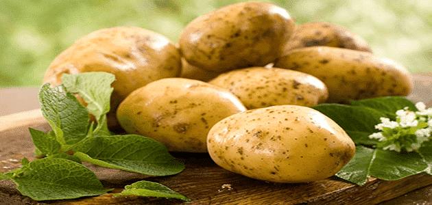 تفسير رؤية البطاطس في المنام ومعناه بالتفصيل
