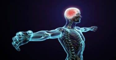 كيفية تقوية الأعصاب بالتمارين والأطعمة المفيدة