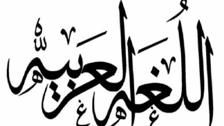 موضوع تعبير عن اللغة العربية هويتنا بالعناصر