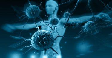 9 أطعمة لتقوية جهاز المناعة ضد الأمراض