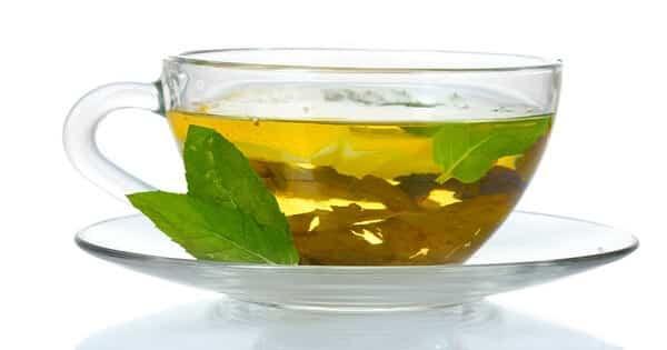 الشاي الاخضر للتنحيف مجرب في اسبوع