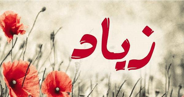 معنى اسم زياد Ziad وأسرار شخصيته معلومة ثقافية