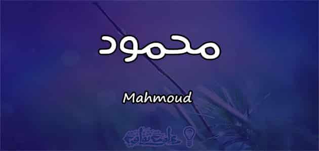 كريم محمود عبد العزيز ويكيبيديا