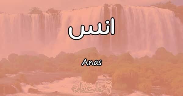 معنى اسم انس Anas وأسرار شخصيته