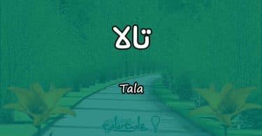 معنى اسم تالا Tala وشخصيتها وصفاتها