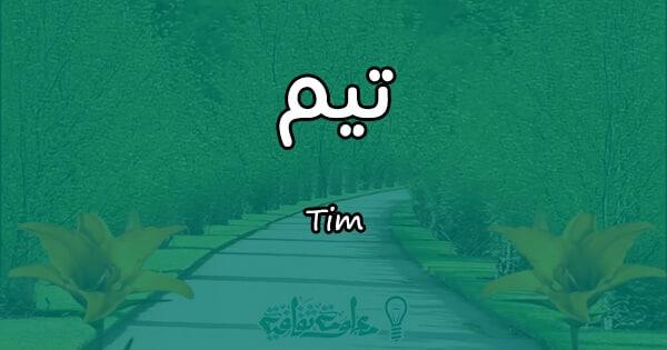 معنى اسم تيم Tim وصفاته في علم النفس