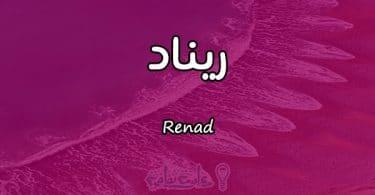 معنى اسم ريناد Renad وصفاتها في علم النفس