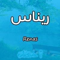 معنى اسم ريناس Renas وصفاتها في علم النفس