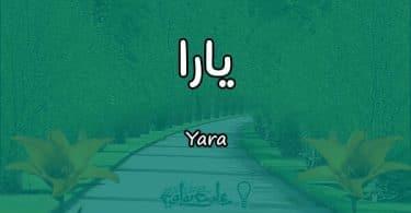 معنى اسم يارا Yara وأسرار شخصيتها