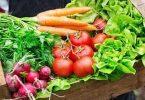 بحث عن الاطعمه الطازجه وفوائدها بالتفصيل
