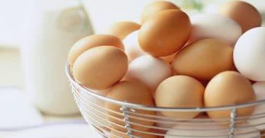 تفسير رؤية جمع البيض في المنام