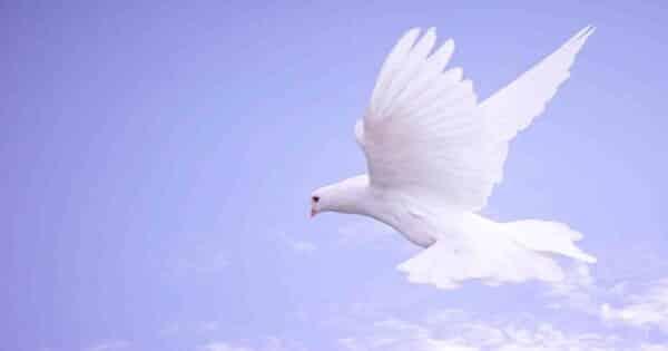 حكم وأقوال دينية عظيمة ومؤثرة