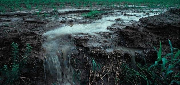 أسباب تلوث المياه وكيفية علاجها