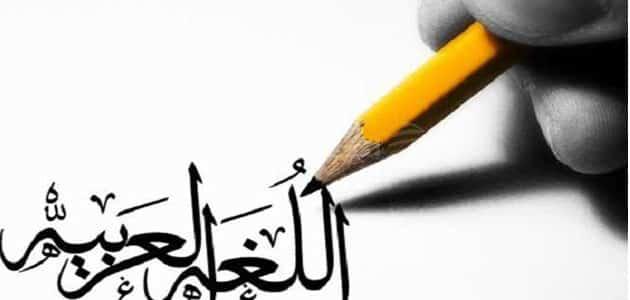 بحث عن اللغة العربية وأهميتها كامل جاهز للطباعة | معلومة ثقافية