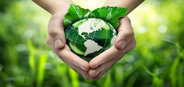 تقييم الأثر البيئي للمشروعات الصغيرة والكبيرة