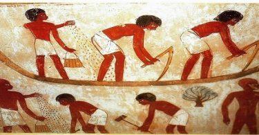 بحث ومعلومات عن الحياة الاجتماعية في مصر القديمة