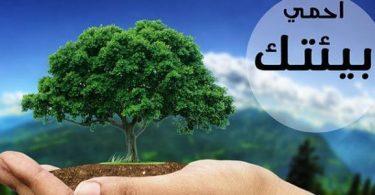 عبارات وكلمات عن البيئة والمحافظة عليها