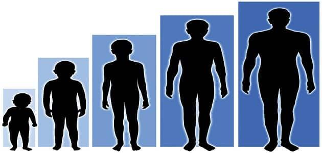 ما هو أفضل وزن وطول المثالي للرجل والمرأة
