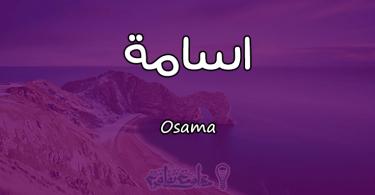 معنى اسم اسامة Osama وصفات حامل الاسم