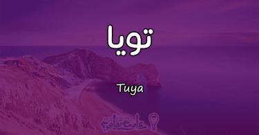 معنى اسم تويا Tuya وشخصيتها حسب علم النفس