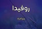معنى اسم روفيدا (رفيدة) Rofida وصفات حاملة الاسم