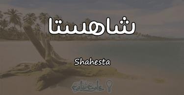 معنى اسم شاهستا Shahesta وأسرار شخصيتها وصفاتها