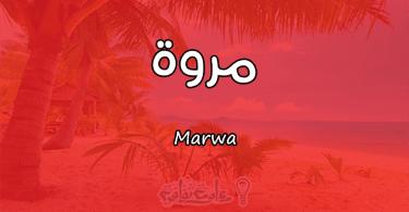 معنى اسم مروة Marwa وأسرار شخصيتها وصفاتها