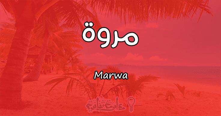 معنى اسم مروة Marwa وأسرار شخصيتها وصفاتها معلومة ثقافية