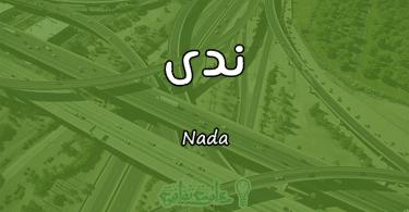 معنى اسم ندى Nada وأسرار شخصيتها وصفاتها