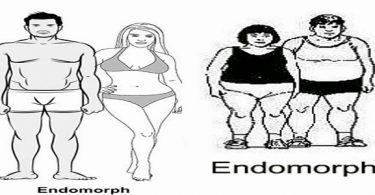 أنواع الأجسام والرجيم المناسب لها