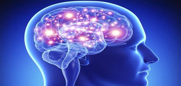 قدرات العقل البشري