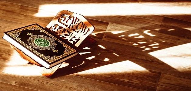 الفرق بين العفو والصفح في الإسلام