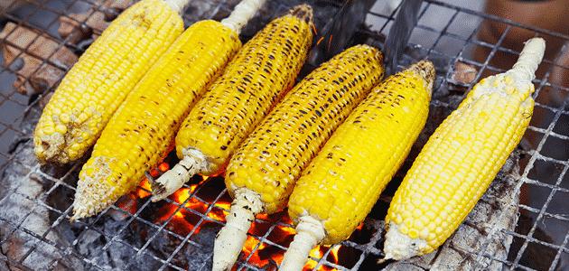 فوائد تناول الذرة المشوى