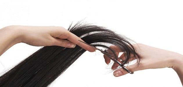 فوائد قص أطراف الشعر يوم 15 من كل شهر