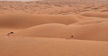أهمية تعمير الصحراء
