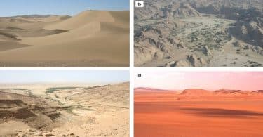 موضوع تعبير عن تعمير الصحراء بالاستشهادات