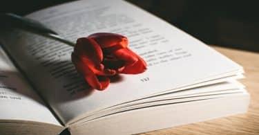 9 اقوال صادقة وراقية عن قسوة القلب في الحب