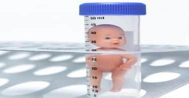 الفرق بين الحقن المجهري واطفال الانابيب للحمل