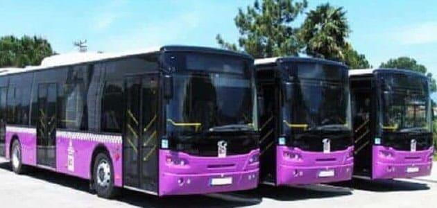 تفسير حلم ركوب الباص والنزول منه في المنام