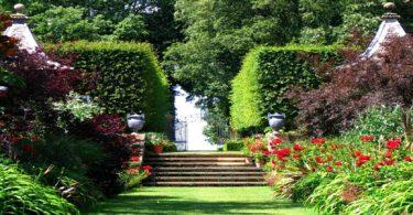 تفسير رؤية البستان الأخضر في المنام